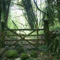 dartmoor-wood-gate